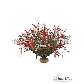 Bình hoa tươi - Hương Xuân 4311