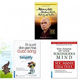 Combo 3 quyển: Sức Mạnh Tiềm Thức, Bí Quyết Đơn Giản Hóa Cuộc Sống, Không Diệt Không Sinh Đừng Sợ Hãi (Tặng kèm bookmark danh ngôn hình voi)