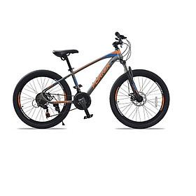 Xe đạp địa hình hiệu FORNIX Racer, vòng bánh 24', màu Xám cam