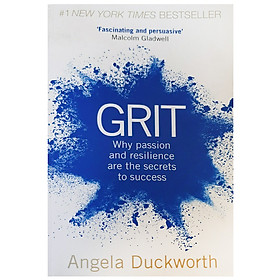 Grit : Why Passion And Resilience Are The Secrets To Success