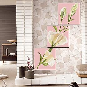 Tranh Canvas treo tường nghệ thuật | Tranh bộ nghệ thuật 3 bức | HLB_151