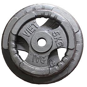 Tạ đĩa gang phi 27 loại 5 kg (quả)