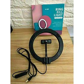 Đèn Led tròn LiveStream 20 CM - Trang điểm - Chụp ảnh - Xăm nghệ thuật - Siêu sáng - Có nút chỉnh 3 chế độ sáng