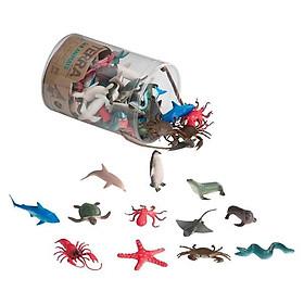 Sinh vật biển TERRA B.Toys AN6002