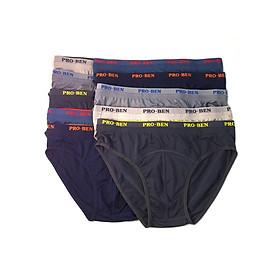 Combo 10 quần lót nam Pro Ben bảng nhỏ MS951