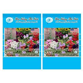 Bộ 2 Gói Hạt Giống Hoa Đậu Thơm - Royal Nhiều Màu (Lathyrus odoratus) 15h