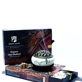 Trầm viên cao cấp của Hoàng Giang- tinh hoa Trầm việt (60g/ hộp)