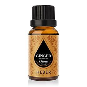 Tinh Dầu Gừng Ginger Essential Oil Heber | 100% Thiên Nhiên Nguyên Chất Cao Cấp | Nhập Khẩu Từ Ấn Độ | Kiểm Nghiệm Quatest 3 | Xông Thơm Phòng