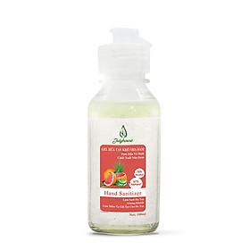 Gel rửa tay khô Nha đam hương tinh dầu bưởi chùm 100ml JULYHOUSE công dụng khử khuẩn khử mùi bảo vệ da tay, giúp mềm mịn da với hương tinh dầu thư giãn tốt cho tiêu hóa hàng chính hãng xuất xứ việt nam