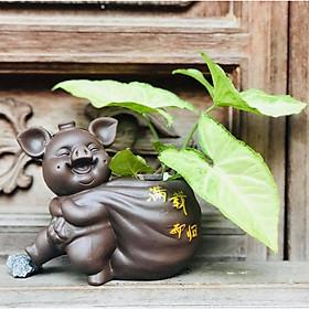 Tượng phong thủy chú heo nâu trồng cây Quanh Năm Sung Túc
