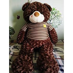 Gấu bông Teddy ICHIGO khổ vải 1m2  màu nâu socola