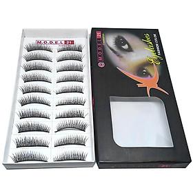 Mi giả tự nhiên Eyelashes Model 21 (Số 10)