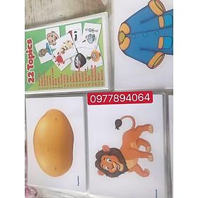 Flashcards 22 chủ đề ép plastics