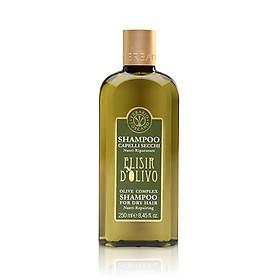 Dầu Gội Olive Complex Shampoo for Dry Hair Nutri-Repairing 250ml