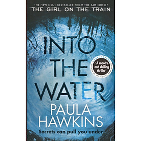 Into the Water Paperback