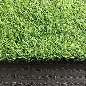 Thảm cỏ nhân tạo loại 2cm cao cấp