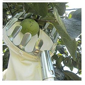 Vợt hái trái cây trên cao đa năng kèm túi vải, dụng cụ hái hoa quả kim loại siêu bền đẹp