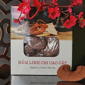 Nấm Linh chi cao cấp Dr. Hani 300gr Nguyên Bào Tử Nấm