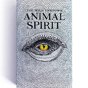 Bộ Bài Bói Tarot Animal Spirit Deck Oracle Cards Cao Cấp