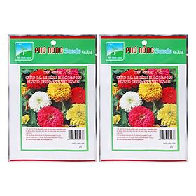 Bộ 2 Gói Hạt Giống Hoa Cúc Lá Nhám Mix PN-12 Phú Nông (1g / Gói)