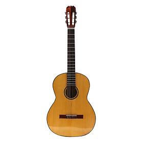 Đàn Guitar Classic SOL.G SAG02CN