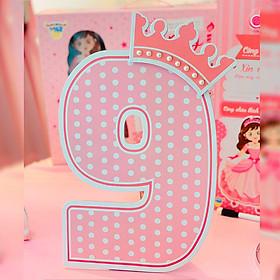 Số Tuổi Trang Trí Sinh Nhật Công Chúa Happy Kibu- 9 Tuổi