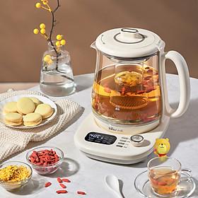 Bear Bình trà dưỡng sinh kèm bếp YSH-C15Q5