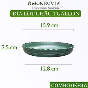 Combo 5 Đĩa lót chậu nhựa trồng cây MONROVIA 1 GL, chậu trồng cây, chậu cây cảnh mini, để bàn, treo ban công, treo tường, cao cấp, chính hãng thương hiệu MONROVIA