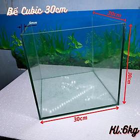 Bể cá mini CUBIC( 15-20-25-30cm) dành cho nuôi cá cảnh hoặc chơi thủy sinh