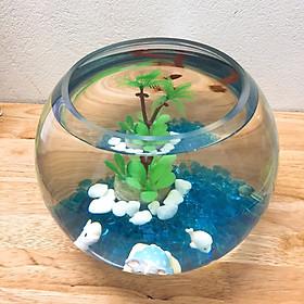 Combo Bể cá mini tròn mùa hè + Phụ kiện + Thức ăn Cá