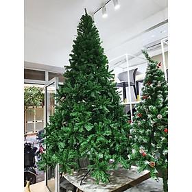 cây thông noel 3m xanh dày lá