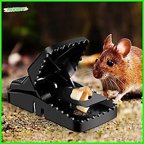 Combo 5 bẫy diệt chuột thông minh