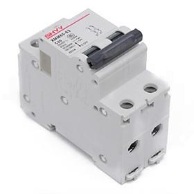 Mini C65 Current-limiting Circuit Breaker for Overload Short-circuit Protecting