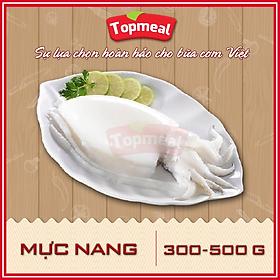 HCM - Mực nang (300 - 500g/con) - Thích hợp với các món gỏi, nướng, hấp, xào, lăn bột,... - [Giao nhanh TPHCM]