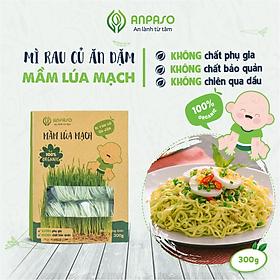 Mì Rau Củ Ăn Dặm Vị Mầm Lúa Mạch Organic Anpaso 300g