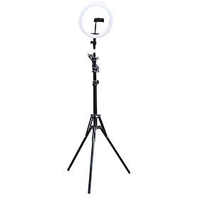 Đèn hỗ trợ Livestream makeup trang điểm  đường kính 26cm