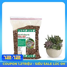 Đất trồng sen đá trộn sẵn-Trồng xương rồng, sen đá-Cung cấp đầy đủ chất dinh dưỡng cho cây trồng- (1kg)