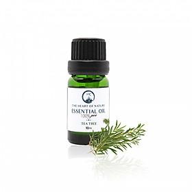 Tinh dầu Tràm trà (Tea Tree) PKoils 10ml