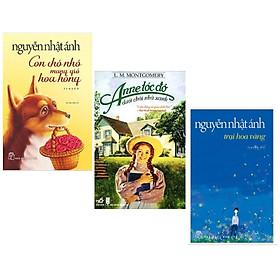 Combo 3 cuốn: Trại Hoa Vàng + Anne Tóc Đỏ Dưới Chái Nhà Xanh + Con Chó Nhỏ Mang Giỏ Hoa Hồng