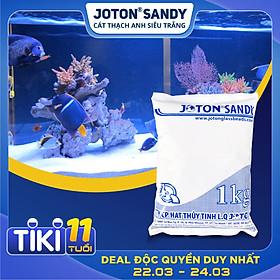 1kg cát thạch anh siêu trắng Joton Sandy cho bể cá và bể lọc