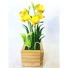 Hình ảnh Chậu hoa đất sét mini- Địa lan vàng - Quà tặng trang trí handmade (34x11x11cm)