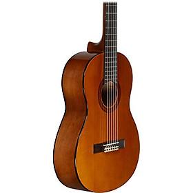 Đàn Guitar Yamaha Classic CGS-102A (size 1/2)