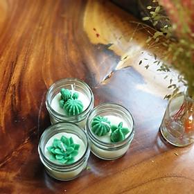 Combo 3 nến thơm tinh dầu gỗ thông hình xương rồng và sen đá 85g mõi hũ, giúp thư giãn giảm stress, thơm phòng- Essential Oil Candle