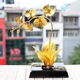 Chậu hoa phong lan phú quý mạ vàng 24K: Quà tặng độc đáo nhân dịp sinh nhật, tân gia cho sếp