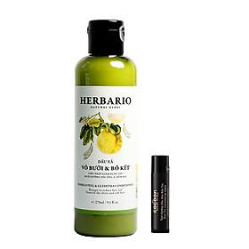 Combo Dầu xả bưởi & bồ kết herbario 270ml + son dưỡng môi dầu dừa bến tre cocoon 5g