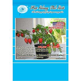 5h Hạt Giống Ớt Siêu Cay Red Habanero (Capsicum chinense)