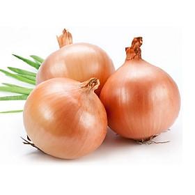 [Chỉ Giao HN] - Hành tây trắng - 500gram
