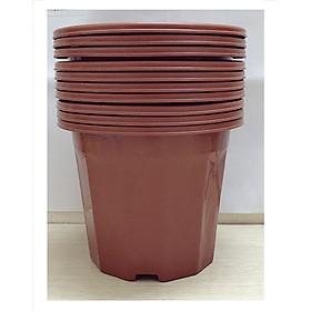 Hình ảnh 10 Chậu Nhựa Trồng Hoa, Cây Cảnh E230 CN