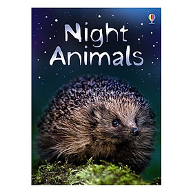 Usborne Night Animals