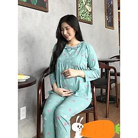 Quần áo cho mẹ bầu, Bộ đồ bầu và sau sinh cho bé ty